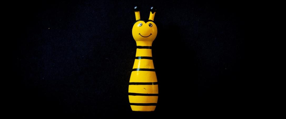 bee-black-background-close-up-1340369-e1550018360865.jpg